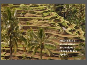 indonesia043