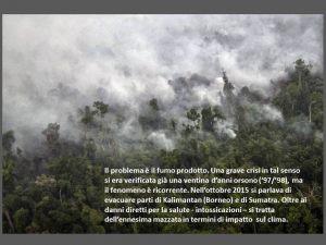 indonesia052