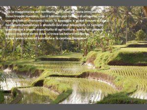 indonesia079