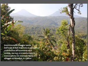 indonesia080