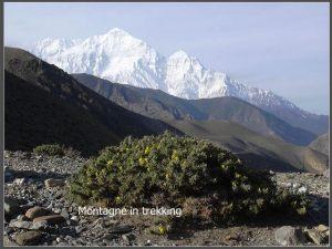 nepal069