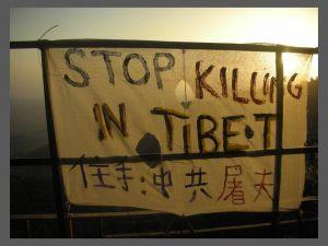 tibet067
