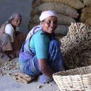Familismo nel subcontinente indiano. L'antitesi di un sistema legalista